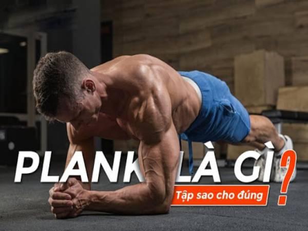 Plank là gì? Những thông tin cơ bản về bài tập Plank